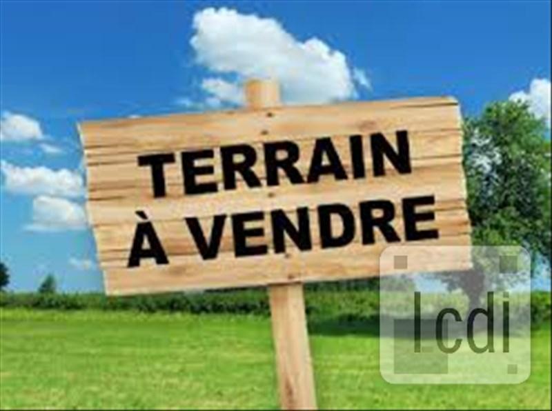 Terrain Saint…