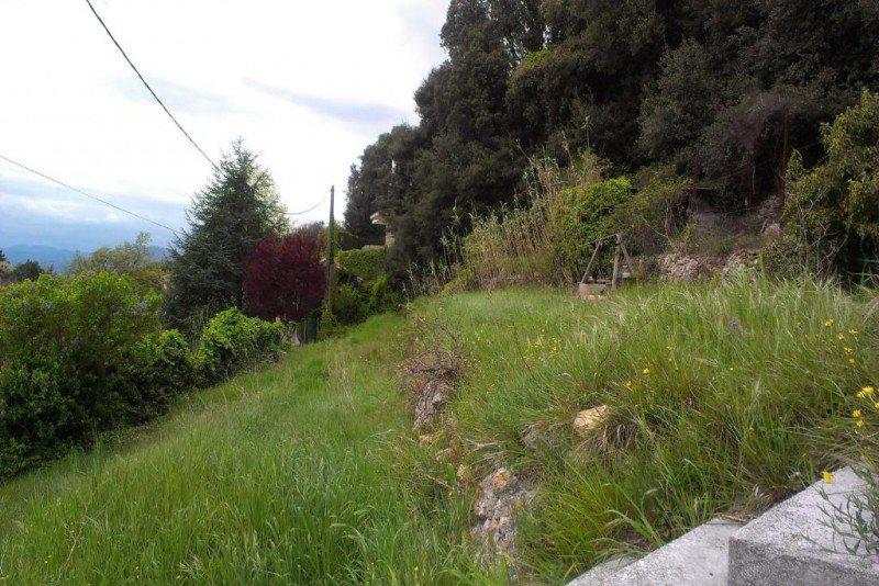 Un terrain non constructible bord eau immojojo - Piscine terrain non constructible ...
