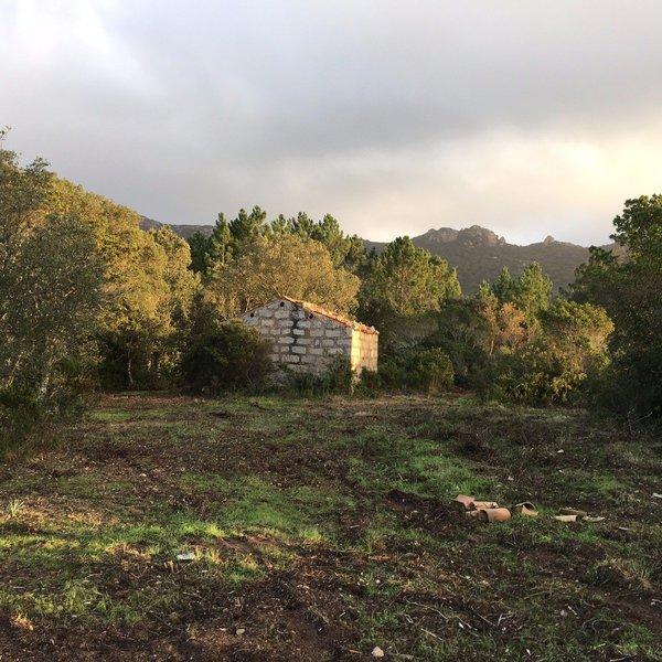 Terrain, 14 000 m² Situé…
