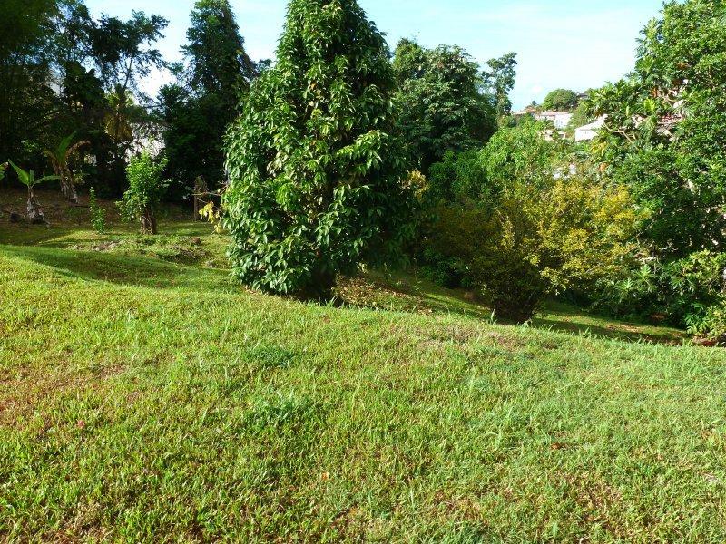 Terrasse bois zone non constructible for Piscine hors sol zone non constructible