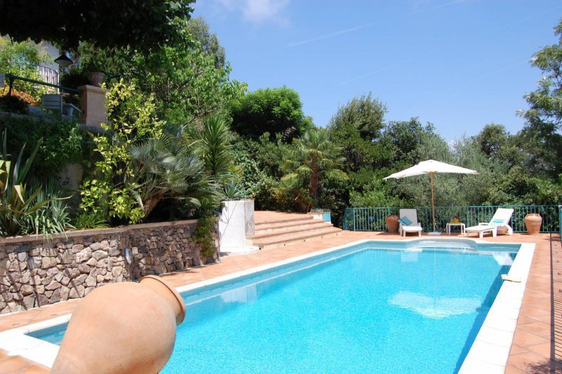 Cuisine studio piscine particulier immojojo - Belle piscine de particulier ...