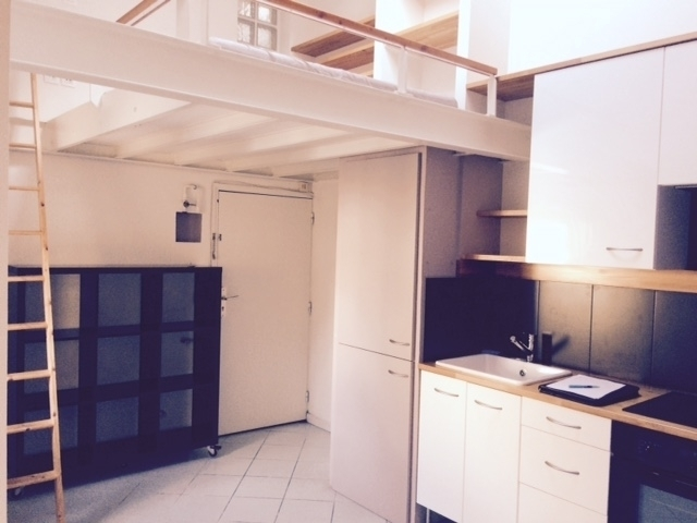 loft grenoble hyper centre immojojo. Black Bedroom Furniture Sets. Home Design Ideas