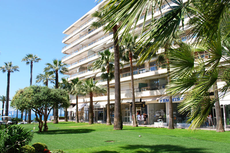 Location cannes croisette meuble immojojo for Location meuble cannes